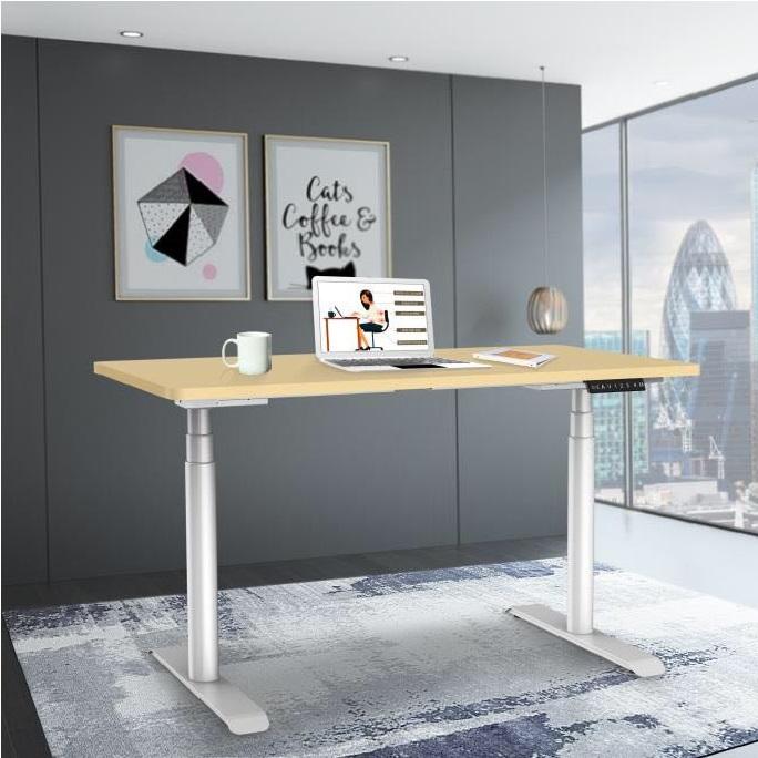Dual Motor adjustable height table height adjustable table office furniture
